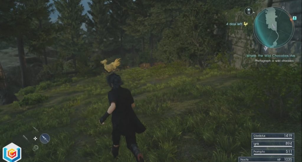 Final Fantasy XV Where The Wild Chocobos Are Side Quest Walkthrough